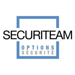 logo securiteam